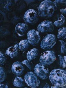 Blauwe bessen bewaren